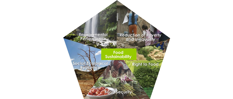 Concept of food sustainability